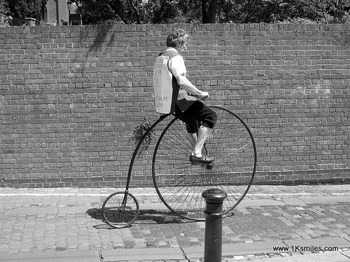 penny farthing wall